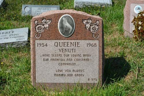 Memorial stone for a buried dog