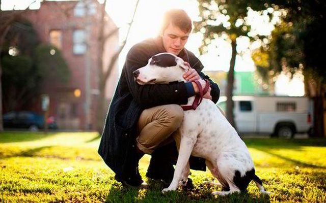 Study Shines Light On Why We Choose Certain Dogs