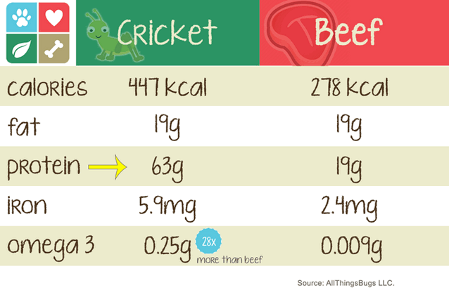 Crickets Instead of Meat...What's In These Dog Treats