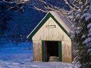 DIY Cold Weather Dog House