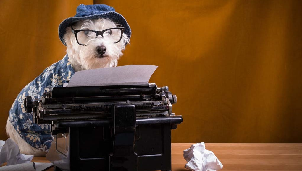 How to Write a Book About Dogs