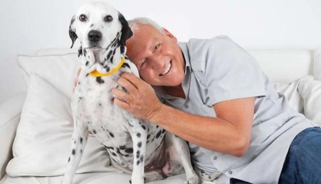 convincing senior parent to get a pet