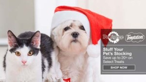 Amazon Best Deals on Dog Supplies for Christmas