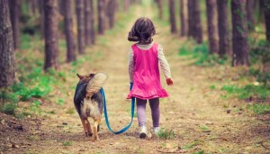 Daily walks with your pet to keep him from running away