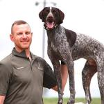 Training Dogs with Electronic Collars