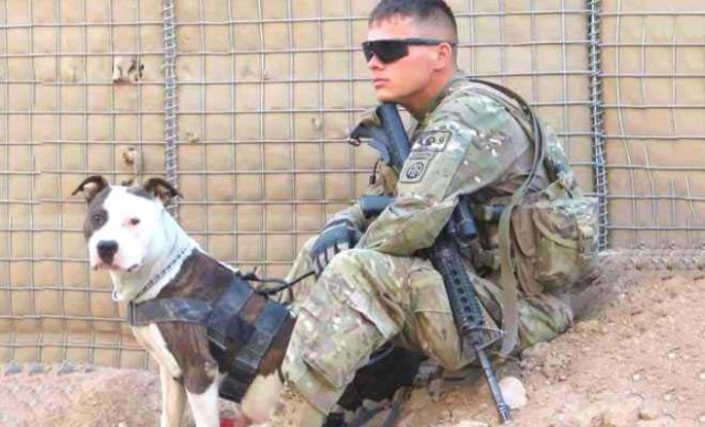 US Soldier Fights for Custody of a Dog Who Saved His Life