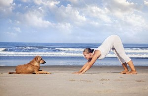What Is Doga - Yoga With Dogs