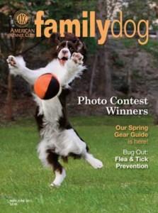 Family Dog Magazine