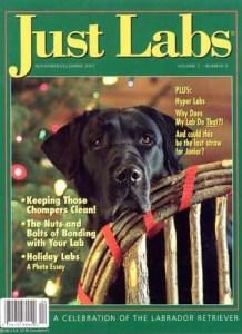 Just Labs Magazine