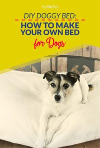 """7 DIY Dog Bed Project Ideas (Best """"How-to to Make"""" Guides)"""