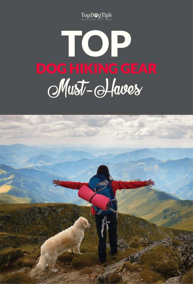 Dog Hiking Gear Must-Haves