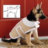 Top 6 Best Dog Coats for Winter Cold, Rain and Bad Weather ...