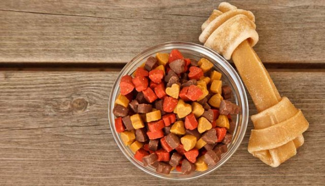 Dog Nutrition and What You Need to Know