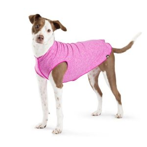 Sun Shield Tees Can Protect Your Dog From the Sun