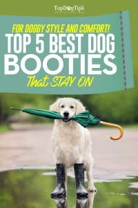 Top Best Dog Booties That Stay On