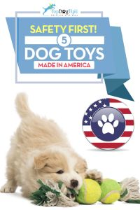 Top Best Dog Toys Made in America