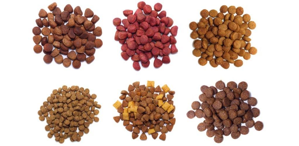 Additives in Dog Foods