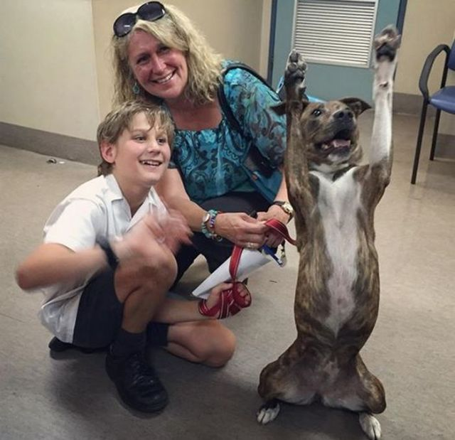 Coso The Dog Does EPIC Goodbye Photo When Adopted