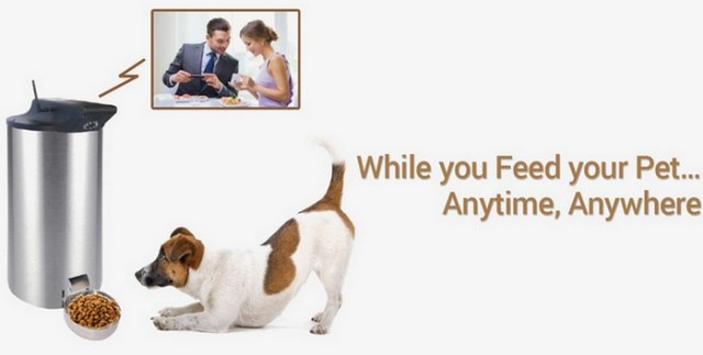 PetPal Automatic Feeder Allows You To Feed Your Dog via WiFi