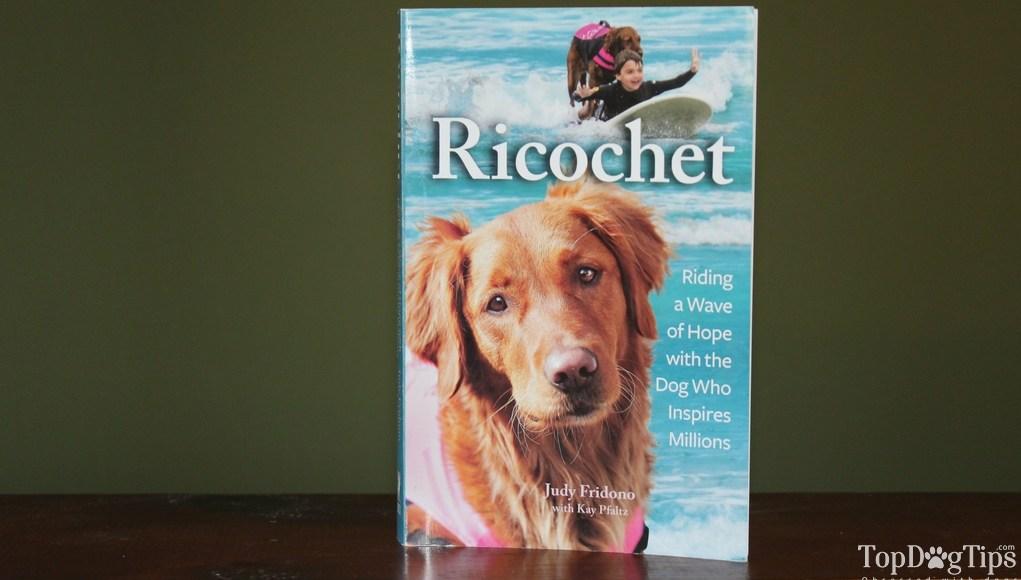 Ricochet Written By Judy Fridono