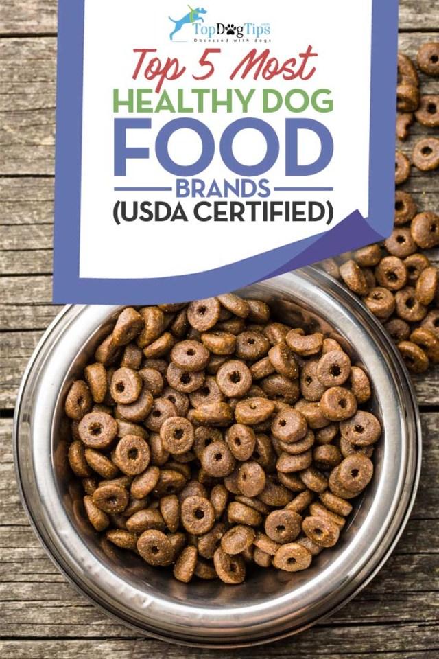 Best Healthy Dog Food Brands
