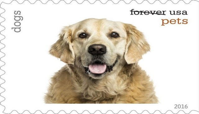 Pets on Postage Stamps