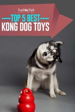 Top Best KONG Dog Toys for Puppies