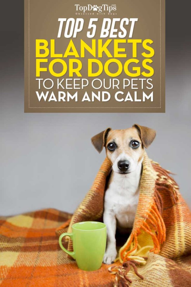 Top Rated Dog Blankets