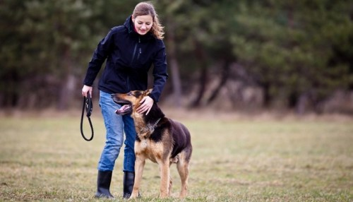 Best Dog Breeds for Women Who Want Loyalty and Protection