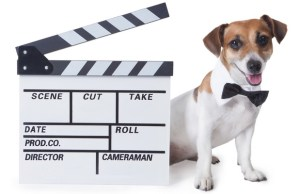 Dog Film Festival is a Howling Good Time!