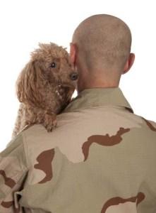 Dogs help against PTSD