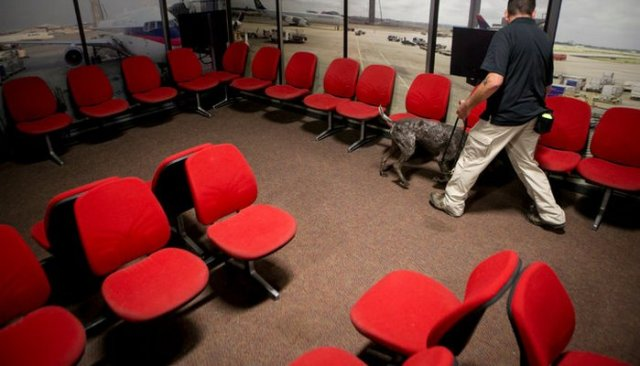 New $12 Million Facility for T.S.A Trained Bomb Sniffing Dogs