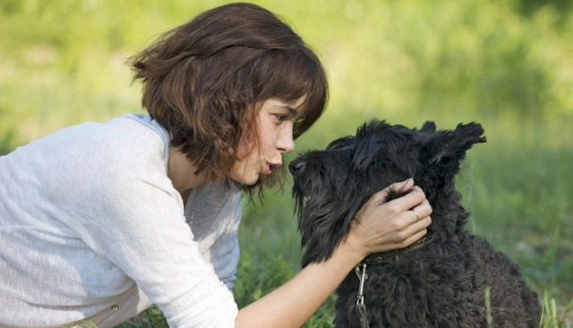 This New Technology Gives Your Dog a Voice