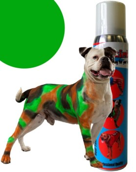 You Can Paint Your Pooch With Dog Paint, But Should You