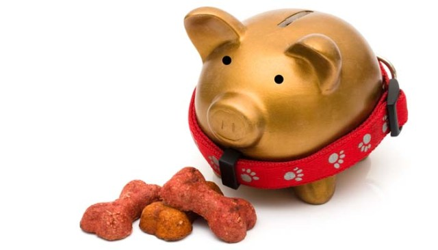 Expensive dog food brands are they worth the cost