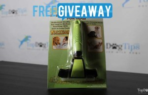 Magic Pro Deshedding Tool for Dogs Giveaway