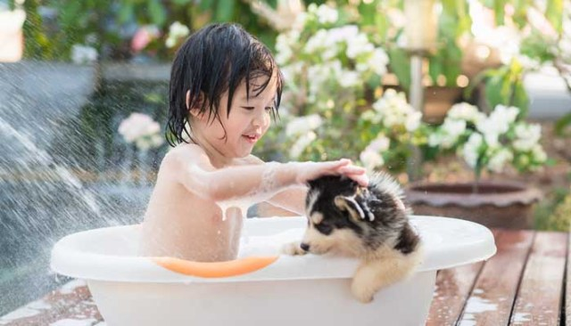A small child is bathing his dog