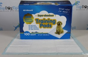 All Absorb Puppy Pee Pad Review