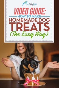 How To Make Homemade Dog Treats Video