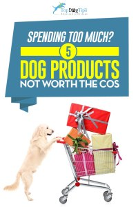 Premium Quality Dog Supplies That Are NOT Worth the High Cost