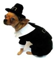 Pilgrim Boy Dog Costume