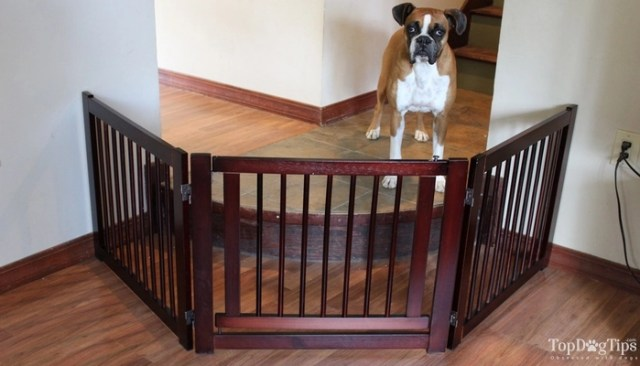 Differences Between These Best Dog Gates
