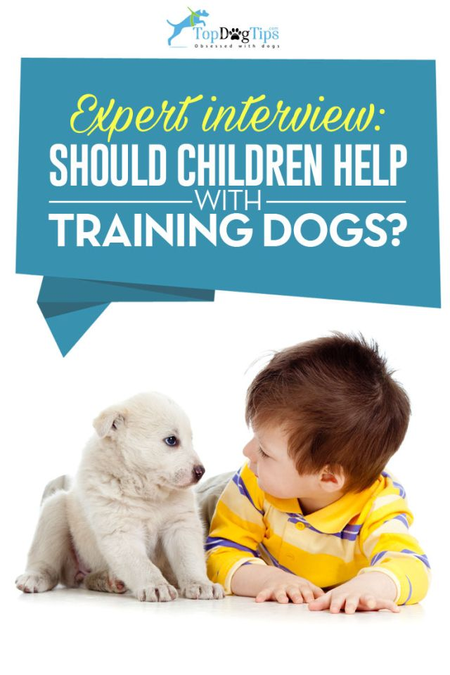 Should Children Help Train the Family Dog