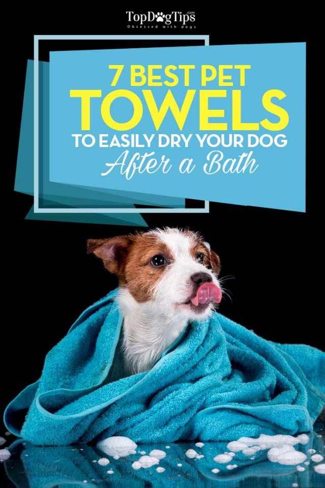 Top Rated Best Dog Towels for Drying Dogs After Bathing