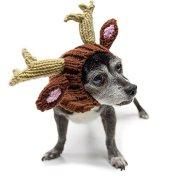 Knit Reindeer Dog Hat