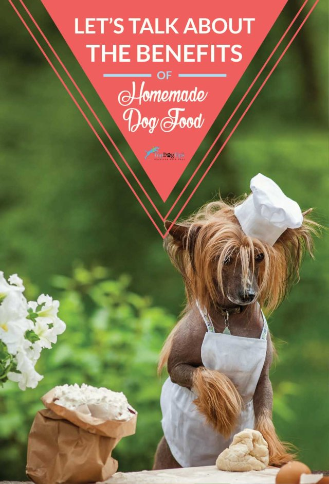 Benefits of Homemade Dog Food