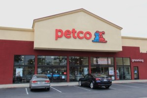 Online Dog Supplies Retailers With Best Deals and Discounts Until 2016s End