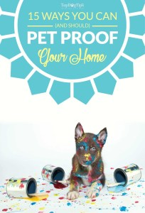 Tips on Pet Proofing Your Home in Preparation for a New Dog