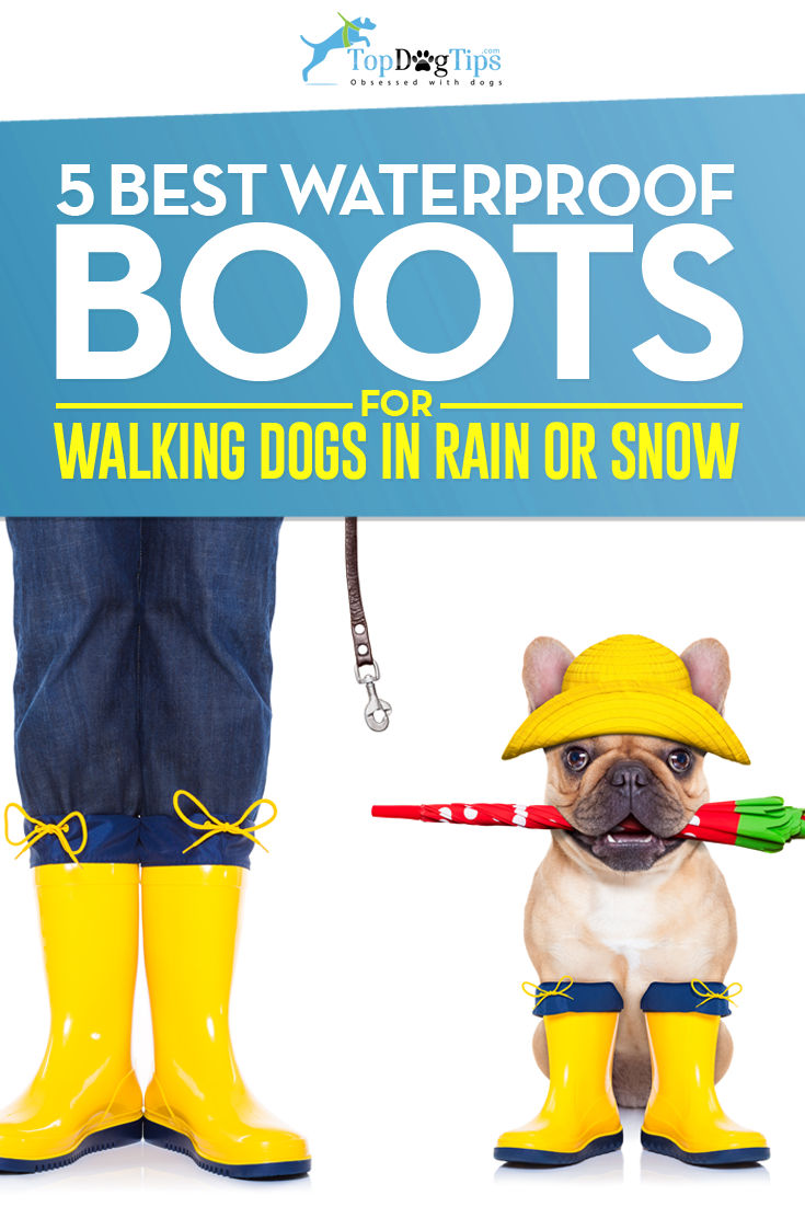 Top Rated Waterproof Boots to Walk Dogs In