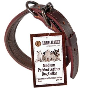 Padded Leather Dog Collar by Logical Leather